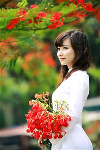 1336996242-hoa-phuong-3